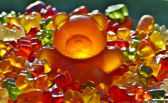 gummi medvěd